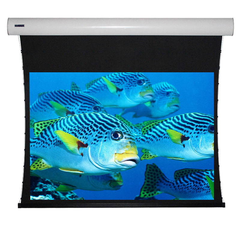 Products Electric Projection Screen Engineering