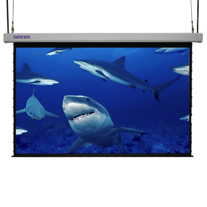 Snowhite Integrated Lifting Motorized Sky Projection Screen